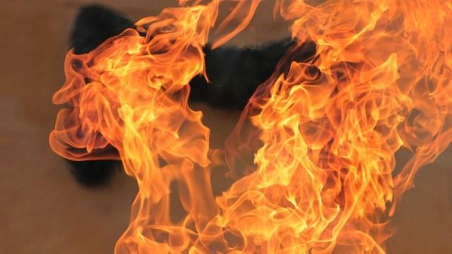 Впродовж минулої доби на Прикарпатті офіційно зареєстровано п'ять пожеж